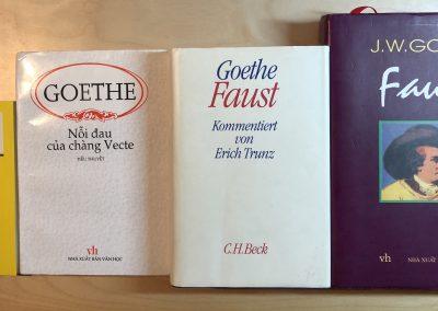 "Literaturprojekt: ""Die Leiden des jungen Werther – Faust I – Faust II"""